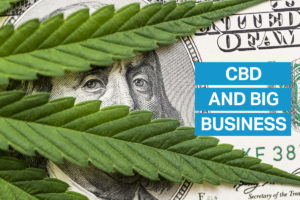CBD and Money